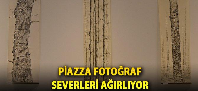 """Piazza 'Sage'nin Ağaçları"""" Sergisi İle Fotoğraf Severleri Ağırlıyor"""