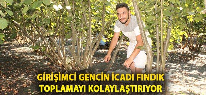 Samsun'da Girişimci Gencin İcadı Fındık Toplamayı Kolaylaştırıyor
