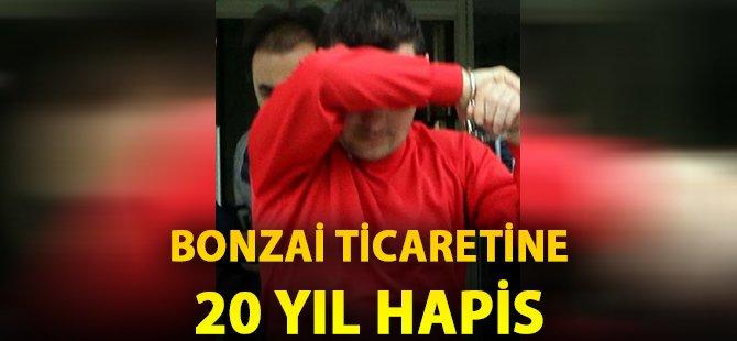 Samsun'da Bonzai Ticaretine 20 Yıl Hapis ve 75 Bin Lira Para Cezası
