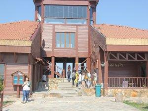 Bitlis, Manisa ve Uşaklı Gençler Samsun'da