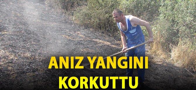 Samsun'da Anız Yangınında 15 Dekar Alan Zarar Gördü