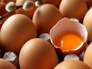 Tavuk Yumurtası Üretimi Haziran Ayında Azaldı
