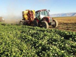 Tarım Gıda İhracatı 10 Yılda 140,1 Milyar Dolar Oldu