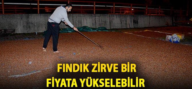 """Fındık Üreticisi Okan Gürsoy:  """"Fındığı Gece Gündüz Nöbetleşe Bekliyoruz"""""""