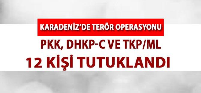 Tokat'ta Terör Operasyonunda 12 Kişi Tutuklandı