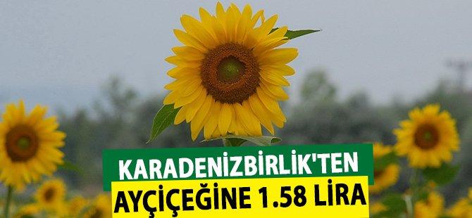 Samsun Karadenizbirlik'ten Ayçiçeğine 1.58 Lira
