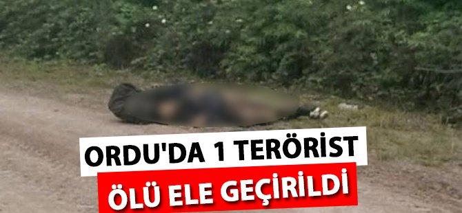 Ordu'da Öldürülen Terörist Tuncelili Çıktı