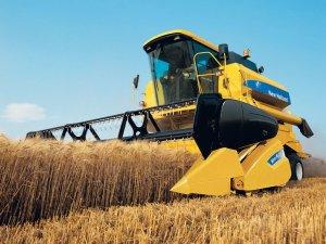 Samsun'da 379 Bin 804 Ton Buğday Üretildi