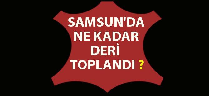 Samsun'da Türk Hava Kurumu Ne Kadar Deri Topladı?