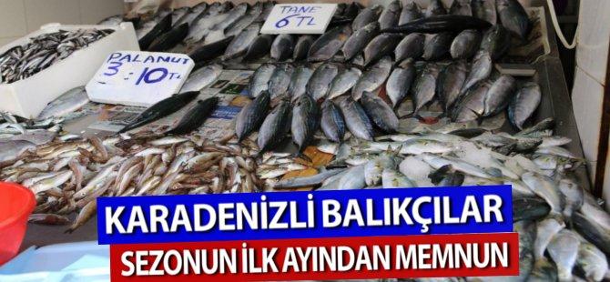Karadenizli Balıkçılar Sezonun İlk Ayından Memnun