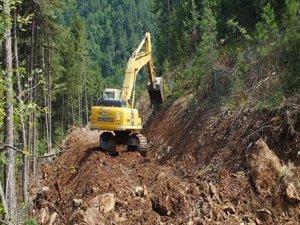 Amasya Orman Bölge Müdürlüğü'nün Samsun'da Yaptığı 72 Projeden 25'i Tamamlandı