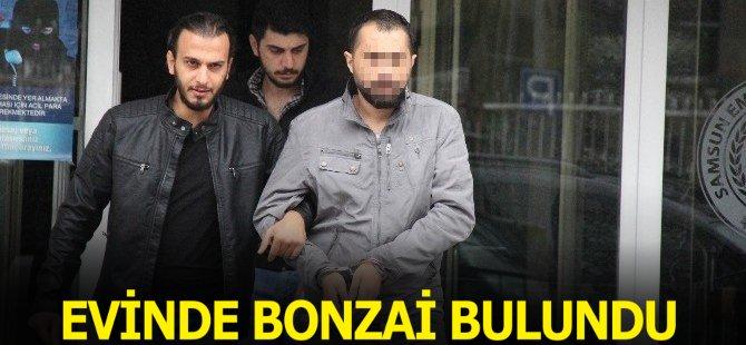 Samsun'da Bir Şahsın Evinde 42 Gram Bonzai Ele Geçti
