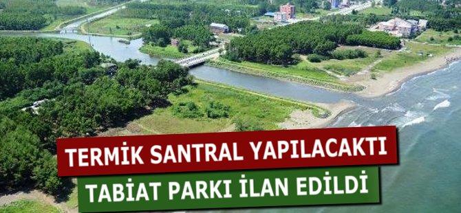 Samsun'da Termik Santrale 'Hayır' Dediler, Yerine Tabiat Parkı İlan Edildi
