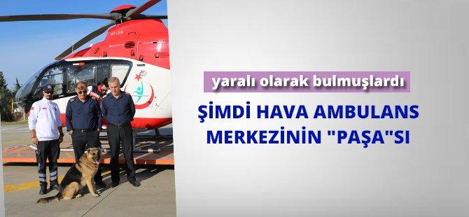 "Samsun Hava Ambulans Merkezinin ""Paşa""sı"