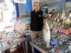 Mudanya'da Balık Bereketi