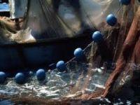 Balıkçı Ağında 300 Kilogramlık Küp