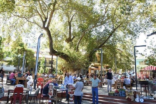 İzmir'de Bin Yıllık Çınarın Gölgesinde Kahvaltı