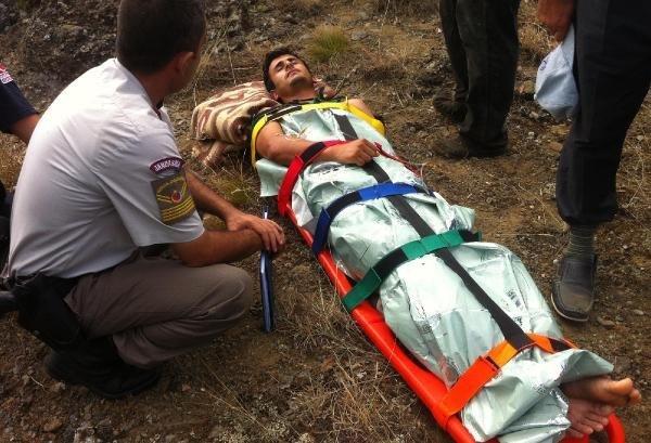 Karabük'te Balık Tutan 6 Kişiye Ayı Saldırdı: 2 Yaralı